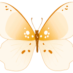 Borboletas – Borboleta Tons de Laranja e Terra 2 PNG