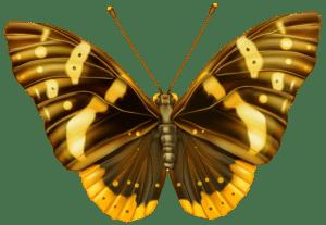 Borboletas - Borboleta Tons de Laranja e Terra 4