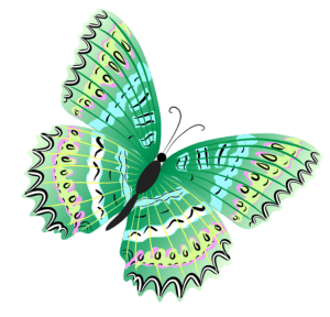 Borboletas - Borboleta Verde e Preta 4