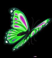 Borboletas - Borboleta Verde e Preta 5