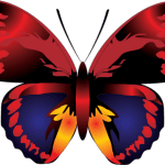 Borboletas – Borboleta Vermelha Colorida PNG