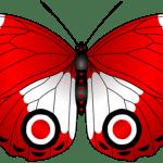 Borboletas – Borboleta Vermelha PNG