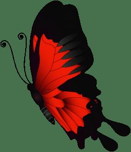 Borboletas - Borboleta Vermelha e Preta 2