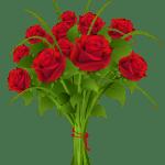 Flores – Buque de Rosa Vermelha PNG