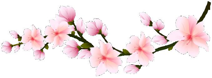 flores flor bonita rosa 5 png imagens e moldes com br cherry blossoms clip art free cherry blossom clip art with birds