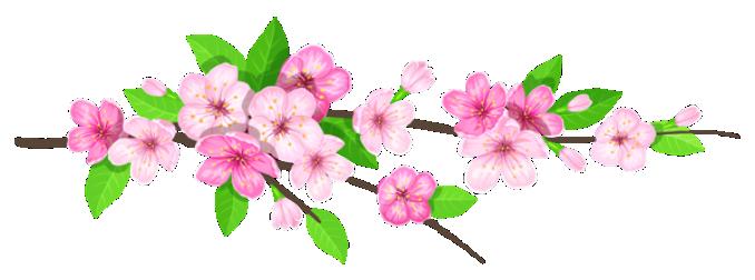 flores flor bonita rosa 9 png imagens e moldes com br
