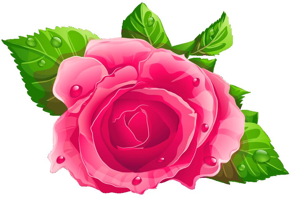 Flores Rosa Cor De Rosa 5 Png Imagens E Moldescombr
