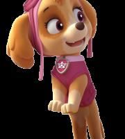 Patrulha Canina - Skye 3