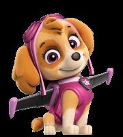 Patrulha Canina - Skye 4