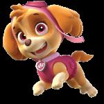 Patrulha Canina – Skye 6 PNG