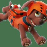 Patrulha Canina – Zuma PNG