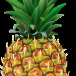 Imagem de Frutas – Abacaxi 3 PNG