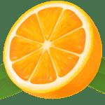 Imagem de Frutas – Laranja 10 PNG