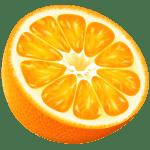 Imagem de Frutas – Laranja 11 PNG