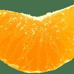 Imagem de Frutas – Laranja 3 PNG