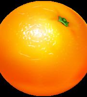 Imagem de Frutas - Laranja 5 PNG