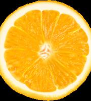 Imagem de Frutas - Laranja 6 PNG