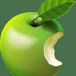 Imagem de Frutas – Maçã Verde 4 PNG