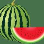 Imagem de Frutas – Melancia 2 PNG
