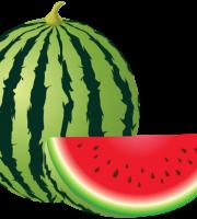 Imagem de Frutas - Melancia 2 PNG