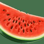 Imagem de Frutas – Melancia 6 PNG