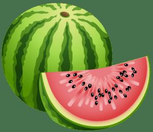 Imagem de Frutas - Melancia 8 PNG