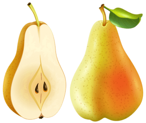 Imagem de Frutas - Pera 3 PNG