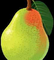 Imagem de Frutas - Pera 5 PNG