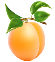 Imagem de Frutas - Pêssego 5 PNG