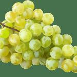 Imagem de Frutas – Uvas Verde PNG