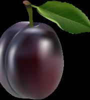 Imagem de Frutas - Ameixa 2 PNG