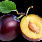 Imagem de Frutas – Ameixa 6 PNG