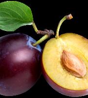 Imagem de Frutas - Ameixa 6 PNG