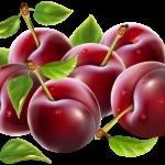 Imagem de Frutas – Ameixa PNG