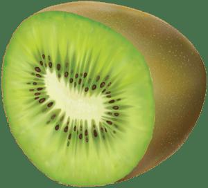 Imagem de Frutas - Kiwi 2 PNG
