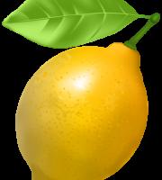 Imagem de Frutas - Limão Siciliano 2 PNG