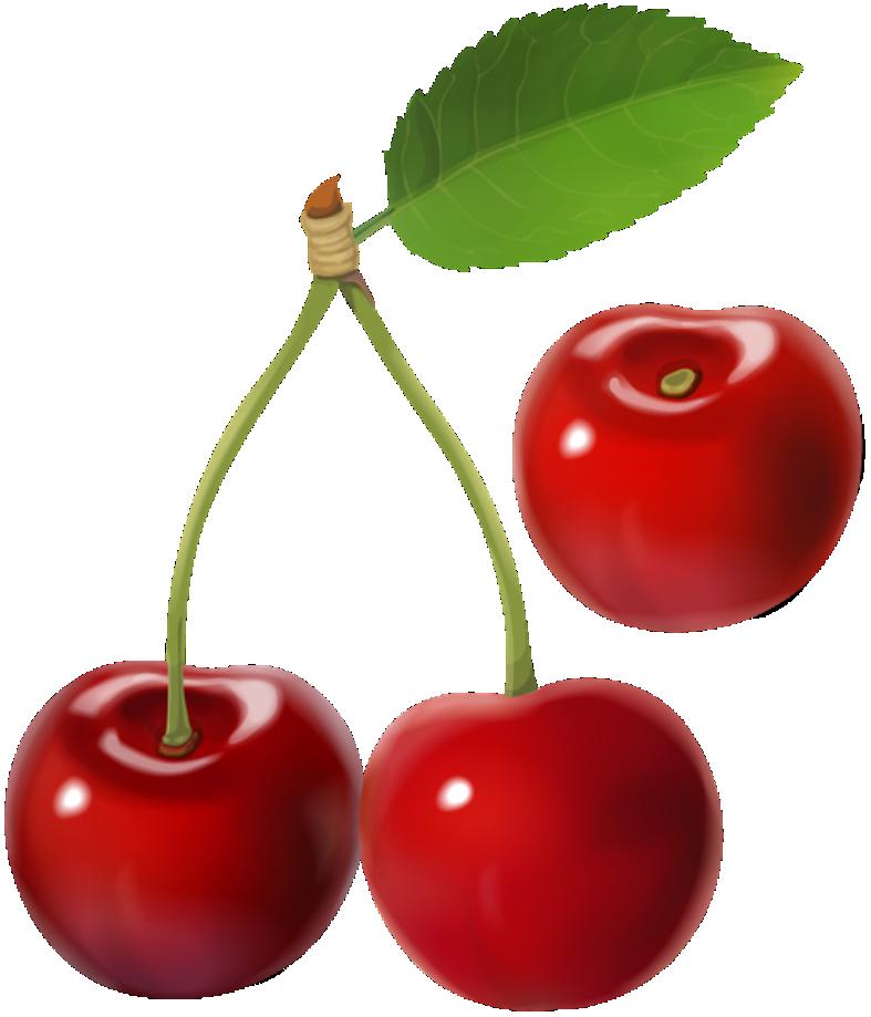 Imagem De Frutas Cereja 2 PNG Imagens E Moldes Com Br