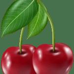 Imagem de Frutas – Cereja 6 PNG