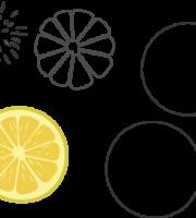 Molde de Limão para EVA - Feltro e Artesanatos1.1