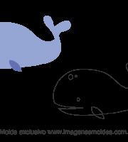 Molde Fundo do Mar - Baleia - Molde para EVA - Feltro e Artesanato
