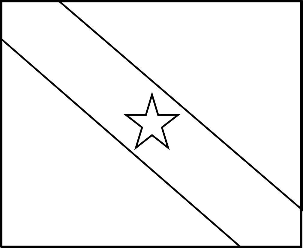 Bandeira Do Brasil Do Estado Do Para Para Colorir 14