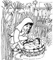 Arquivos Desenhos Biblico Para Imprimir O Menino Moises