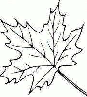 Arquivos Desenhos Para Colorir Folhas De Outono