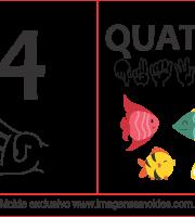Imagens de Números em Libras Número 4