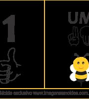 Imagens de Números em Libras Número Um 1