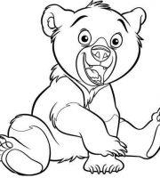 Arquivos Desenhos Para Colorir Irmao Urso