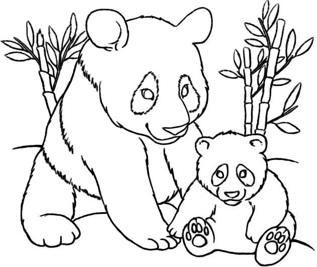 Desenhos Para Colorir Panda