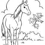 Desenhos para colorir de animais na fazenda jpg