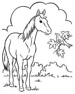 Desenhos Para Colorir Ou Imprimir De Animais Na Fazenda Jpg