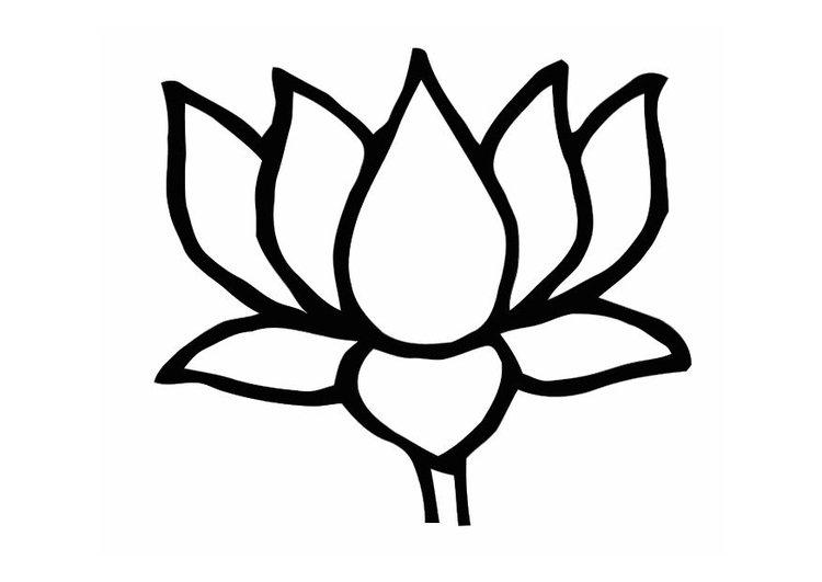 Desenhos Para Colorir Flor De Lotus